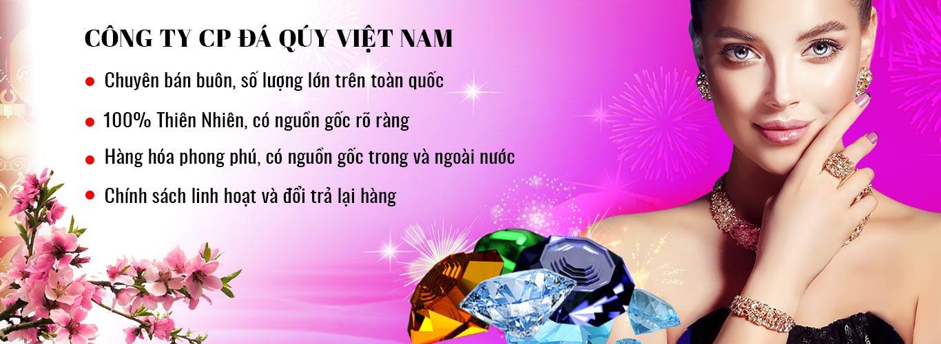 Banner Tet Da Quy