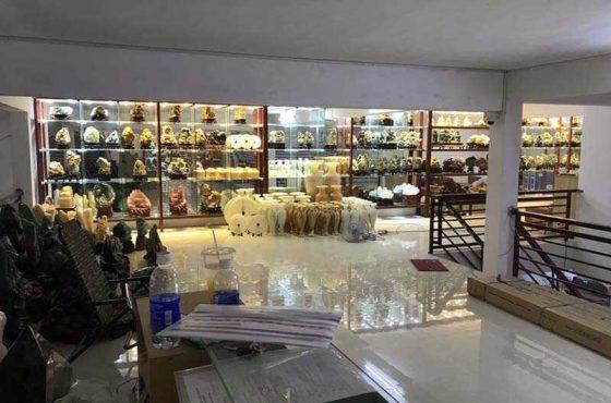 Showroom Hcm 10